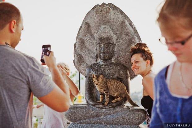 Фотографирующиеся туристы