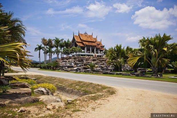 Коллекция пальм в саду Нонг Нуч