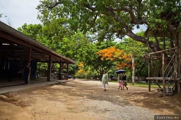 В тени тамариндовых деревьев