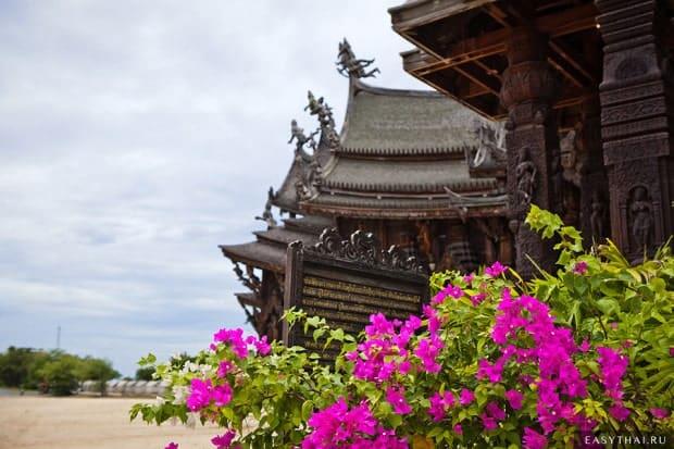 Цветы возле храма