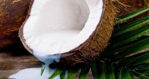 Кокос и тайский кокосовый рай