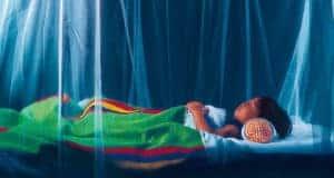 Малярия. Симптомы и профилактика болезни