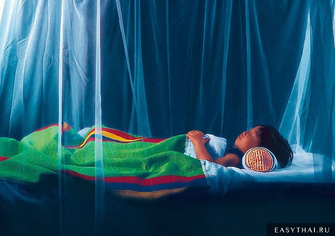 Смертельно опасная болезнь малярия передается через — Инфекционные заболевания