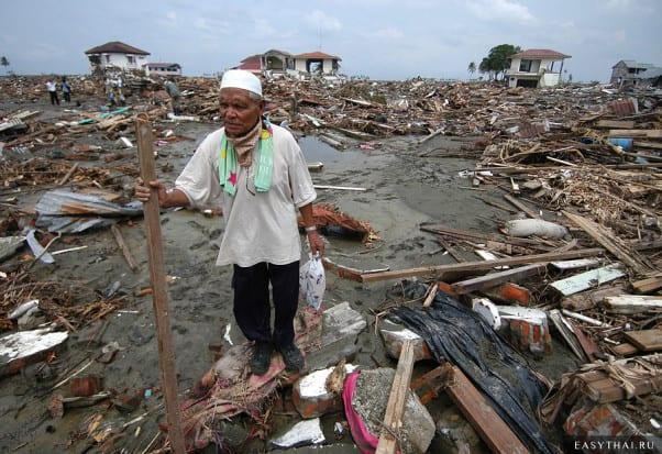 Последствия цунами