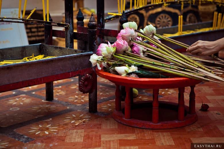 Бутоны лотосов в храме