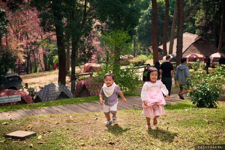 Тайские дети на природе