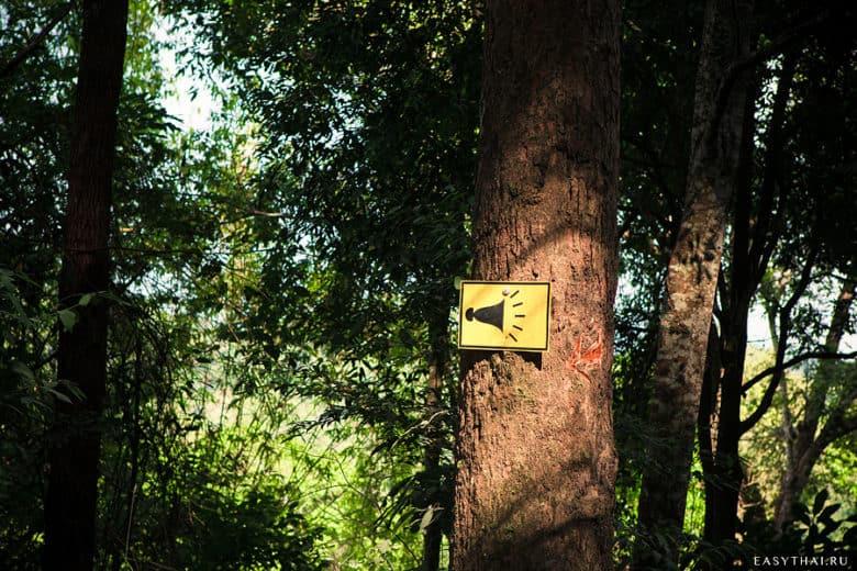 табличка с клаксоном на дереве