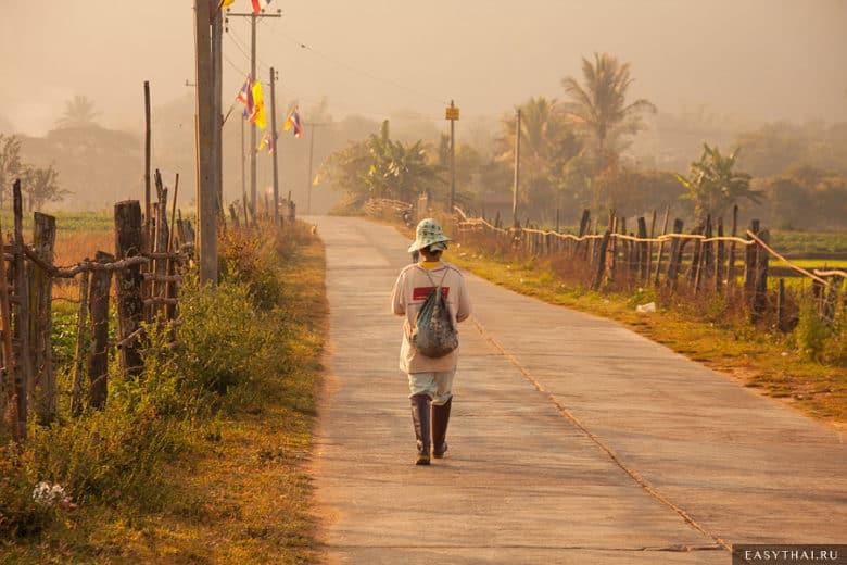 В тайской деревне утром