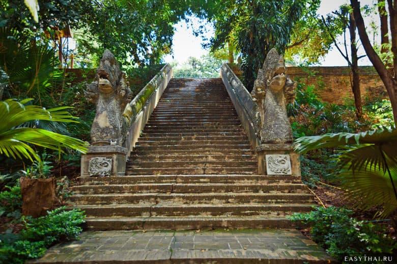 лестница в Ват Умонге в Чиангмае
