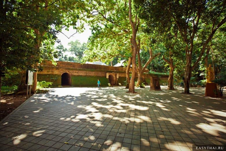 Входы в туннели в Ват Умонг в Чиангмае