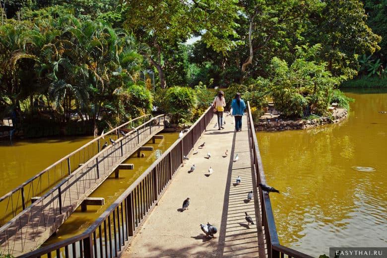Мост на островок в центре озера