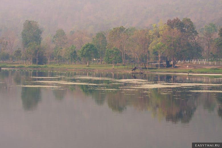 Озеро в Чиангмае