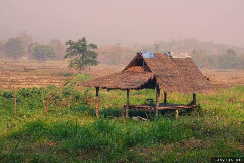 Хижина и рисовое поле