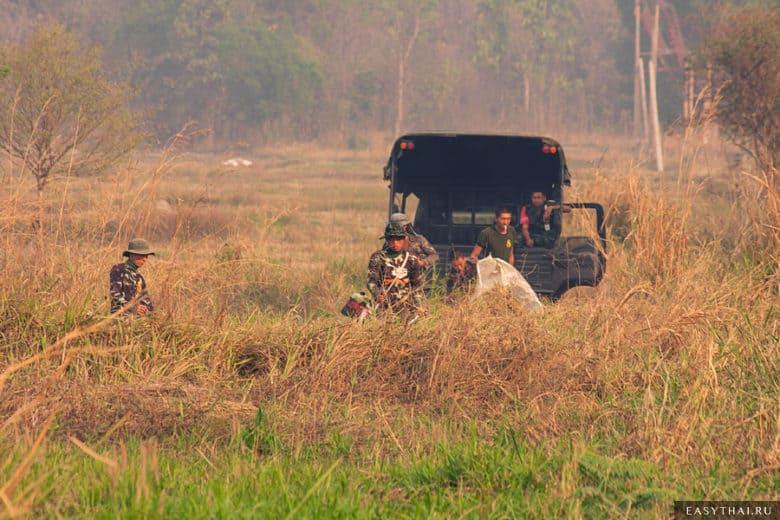 Отряд тайцев стрижет траву