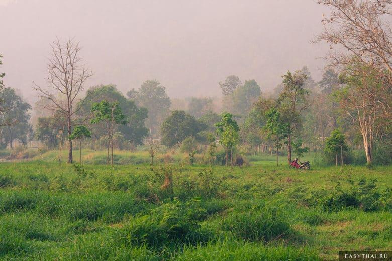 Красивая природа Чиангмая